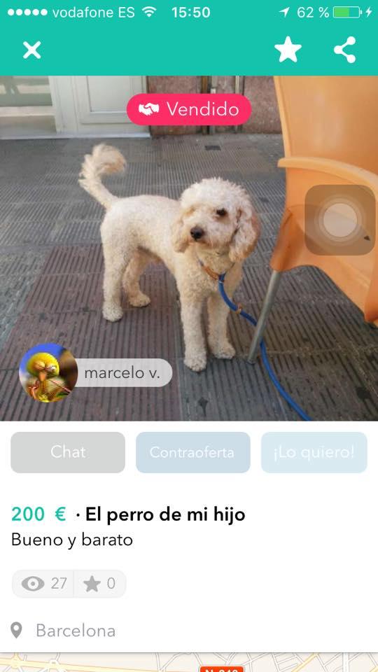 El perro de mi hijo