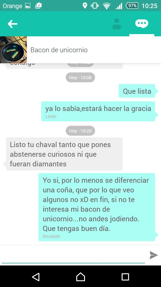 Chat bacon unicornio 2