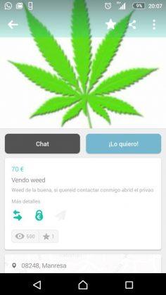VENDO WEED