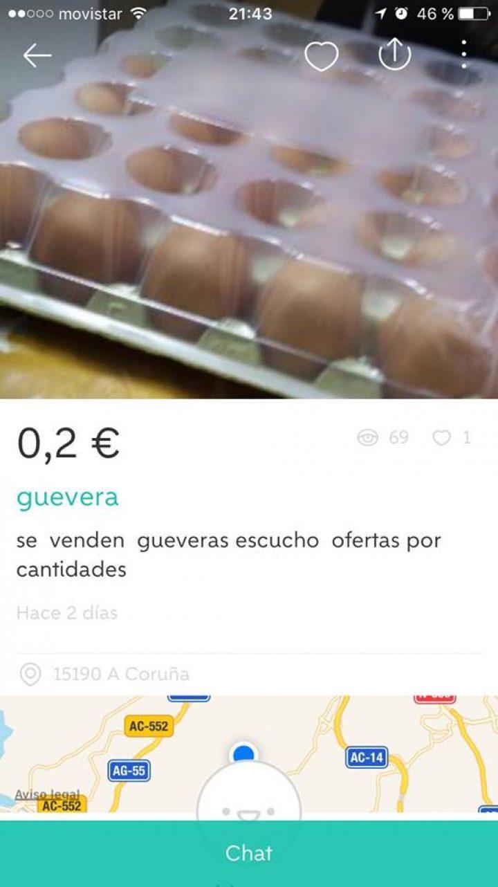 """""""GUEVERA"""""""