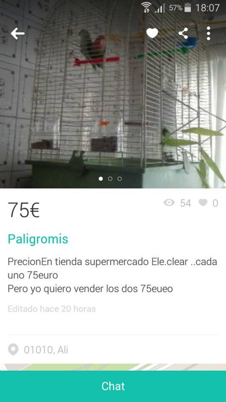 """""""PALIGROMIS"""""""