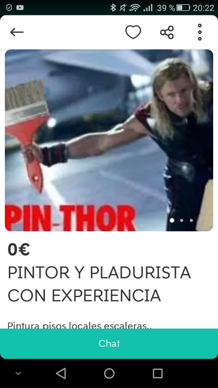 PINTOR Y PLADURISTA