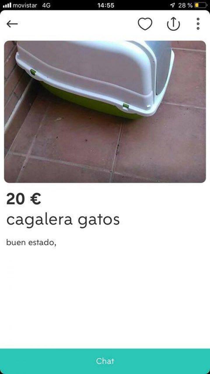 """CAGALERA GATOS"""