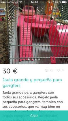 JAULA GRANDE Y PEQUEÑA
