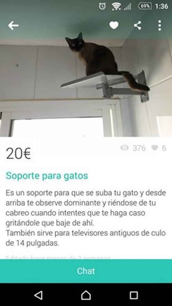SOPORTE PARA GATOS